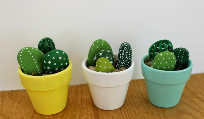 saks%C4%B1da ta%C5%9Ftan kakt%C3%BCsler e1503950162189 650x380 - Stone Made With Cactus
