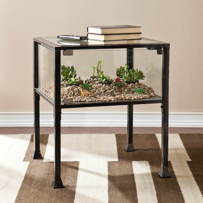 2 650x650 - Sukulent Moved To The Table! Coffee Table Terrarium Made