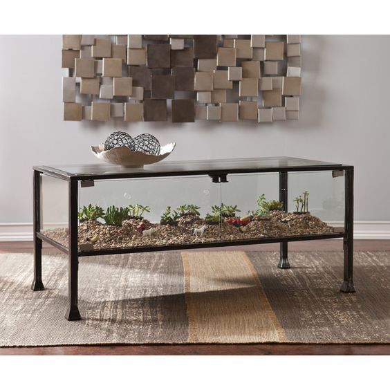 4 - Sukulent Moved To The Table! Coffee Table Terrarium Made