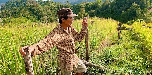 Satoyama memberi kepercayaan dan ruang bagi masyarakat untuk merawat, memperbaiki lahan rusak dan mengelolanya sesuai kearifan lokal masing-masing komunitas. Photo by Moses Ceaser/CIFOR