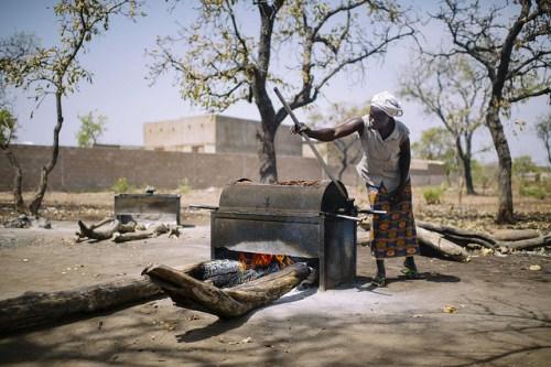 Shea dari Burkina Faso, dikumpulkan oleh wanita dari ladang, digunakan dalam produk kosmetik, memasak dan sebagai pengganti coklat. CIFOR/Ollivier Girard