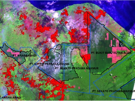 Gambar 1: Analisis penginderaan jarak jauh cagar biosfer GiamSiak Kecil-Bukit Batu, mengindikasikan kebakaran Juni 2013 dalam warna merah terang, terletak di dalam hutan cagar, hutan tanaman dan dalam zona transisi. Lihat di sini untuk lebih rinci.