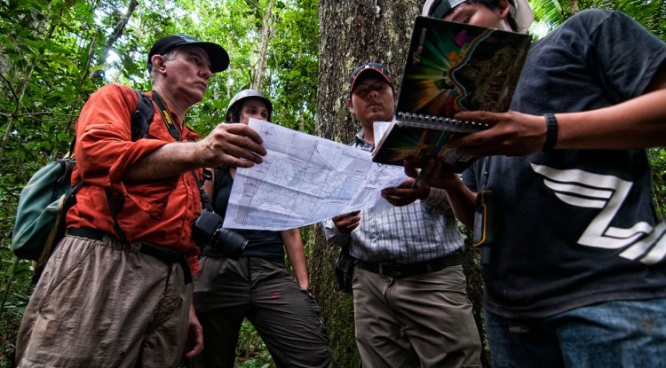 CIFOR scientists are recording the production of every Brazil nut tree in this concession to determine the impact of timber harvesting.