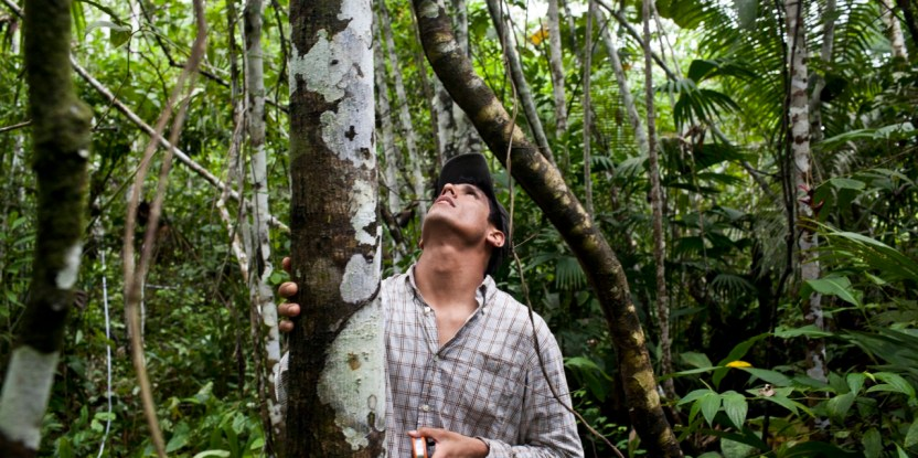 Even though there has been a great deal of research documenting forest use by rural people in the Peruvian Amazon, there is still a general lack of systematic analysis.