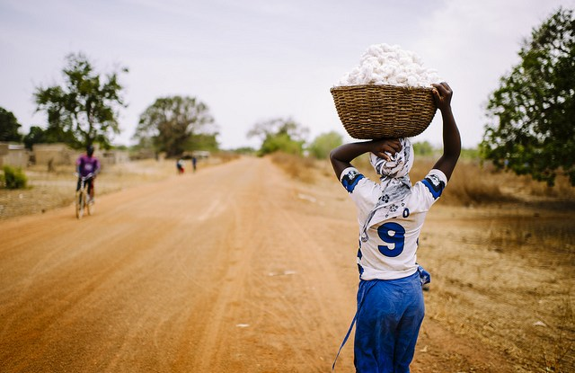 Nigna Latifa, 26, carries a basket of freshly harvested cotton, outside the Zorro villager, Burkina Faso.