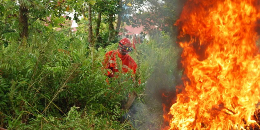 Indonesian firefighters practice their craft - a formidable challenge.  Eko Prianto/CIFOR