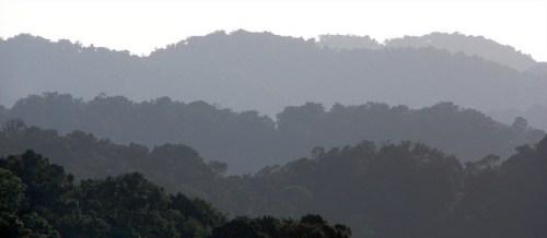 Landscape in Uganda.   Photo by Douglas Sheil for Center