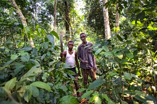 Hunters in the Tumba-Ledima Reserve, Democratic Republic of Congo. A study has examined tension among different groups of forest users in Central Africa. Ollivier Girard/CIFOR photo