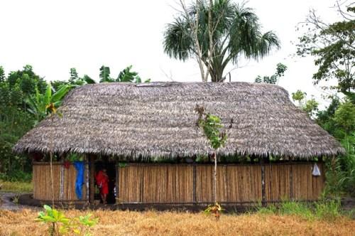 Expertos proponen considerar las observaciones sobre el cambio climático de los pueblos indígenas para planes de adaptación en la Amazonía. Foto CIFOR.