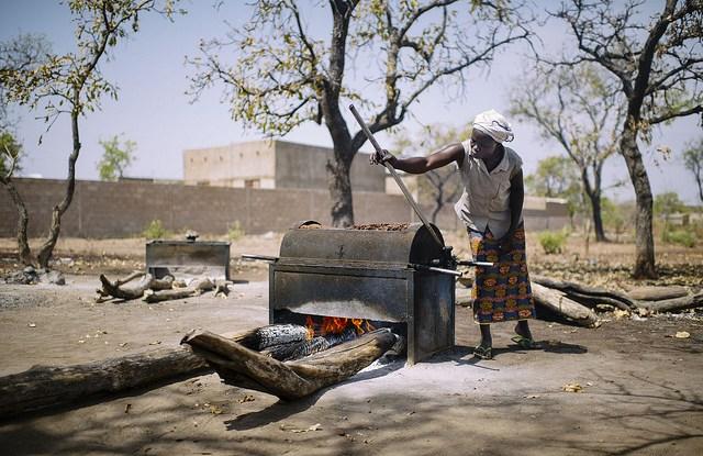 In Burkina Faso, shea nuts are vital to rural livelihoods. CIFOR.
