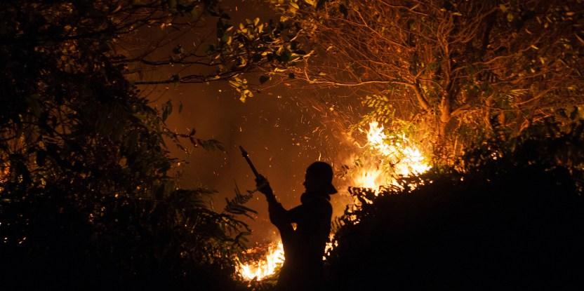 Des pompiers essaient de vaincre les flammes à Palangka Raya,  au Kalimantan central. Aulia Erlangga/ CIFOR