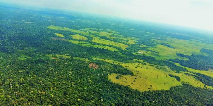 Un estudio ha examinado los reglamentos y normas de uso de la tierra de Perú, Indonesia, Tanzania, México y Vietnam;  y evidenciado que aunque son muy heterogéneos, todos tienen elementos en común.