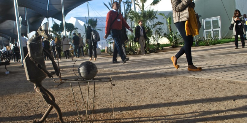 Research on land and forests had a key role to play in climate negotiations in Marrakesh.