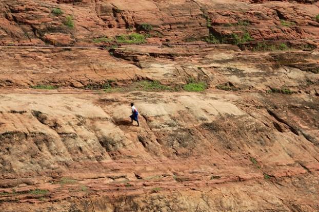 Priorizar es clave para las iniciativas de restauración de paisajes