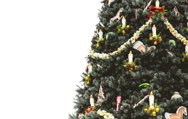 Protecting hardwood floors from Christmas tree needles