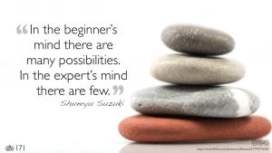 Beginner v Expert Open Mind