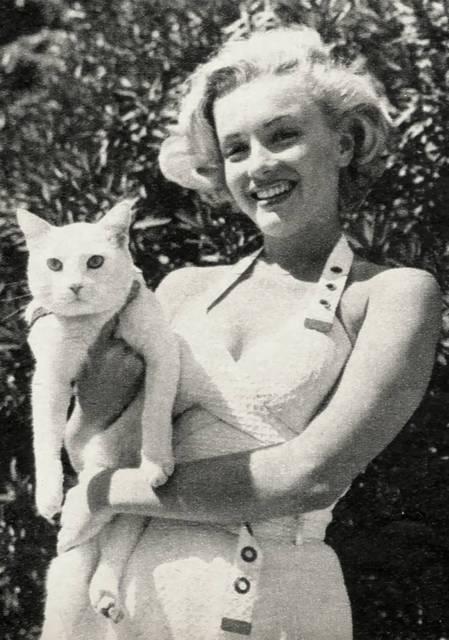 Marilyn e il suo splendido Mitsou!