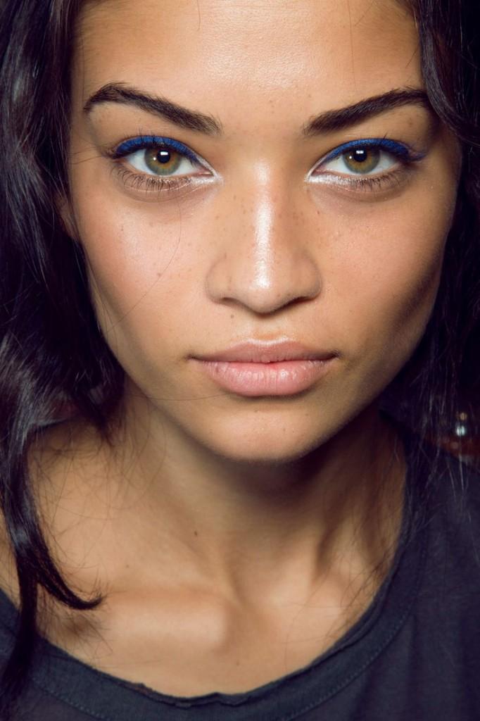 silver-inner-eye-make-up