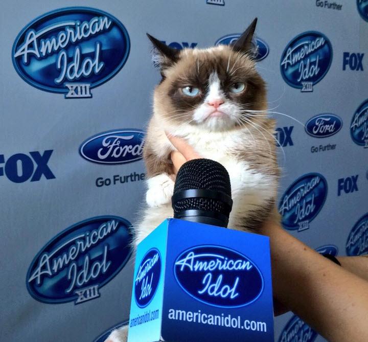 Grumpy-Cat-Says-You-Shall-Not-Pass