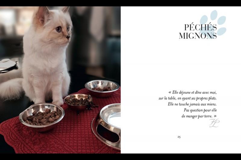 Choupette-le-chat-de-Karl-Lagerfeld-est-la-star-d-un-livre