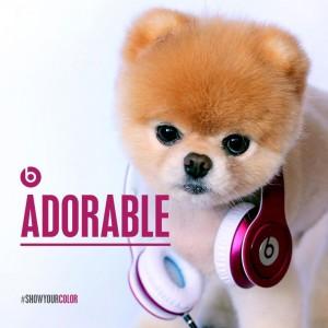 boo-beats-dre-300x300