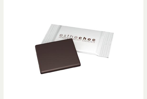 estechoc-brochure-print