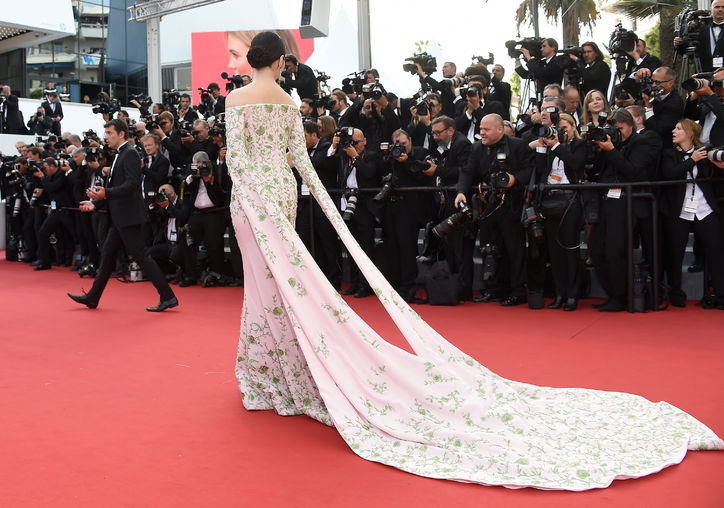 fan-bingbing-pink-green-floral-dress-cannes-2015-w724