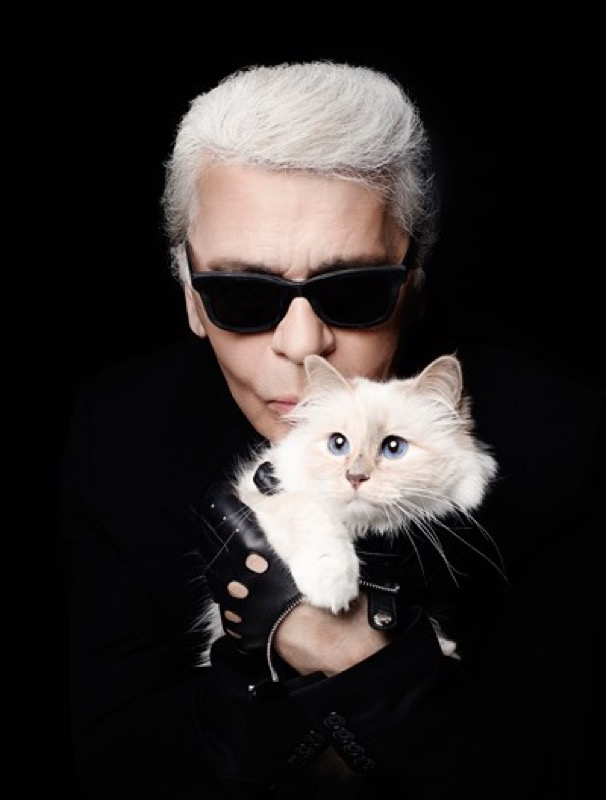 ClioMakeUp-gatti-cani-prodotti-animali-spazzola-Karl-Lagerfeld-Choupette