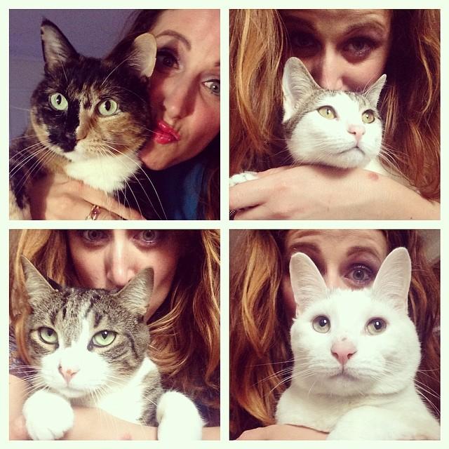 cliomakeup-sei-bella-come-sei-4-gatti