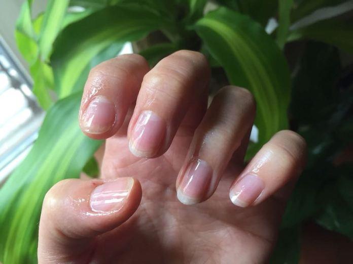 cliomakeup-rimedi-unghie-fragili-prodotti-trattamenti-7-olio-unghie