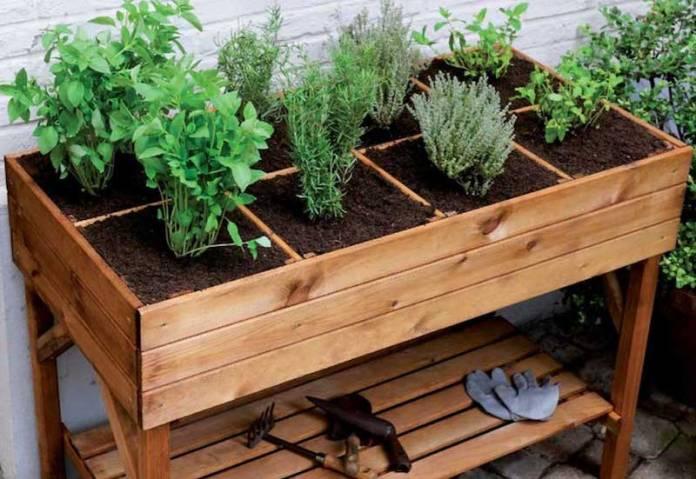 cliomakeup-vivere-sostenibile-6-orto-sul-balcone