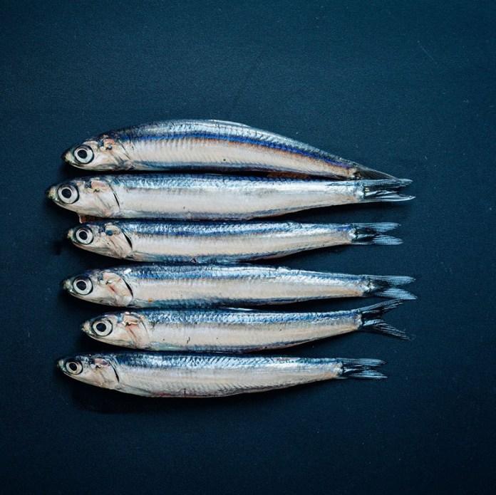 cliomakeup-alimentazione-in-allattamento-15-pesce-azzurro.jpg