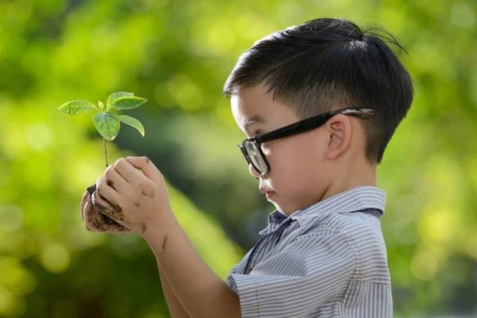 cliomakeup-metodo-montessori-a-casa-1-cura-piante