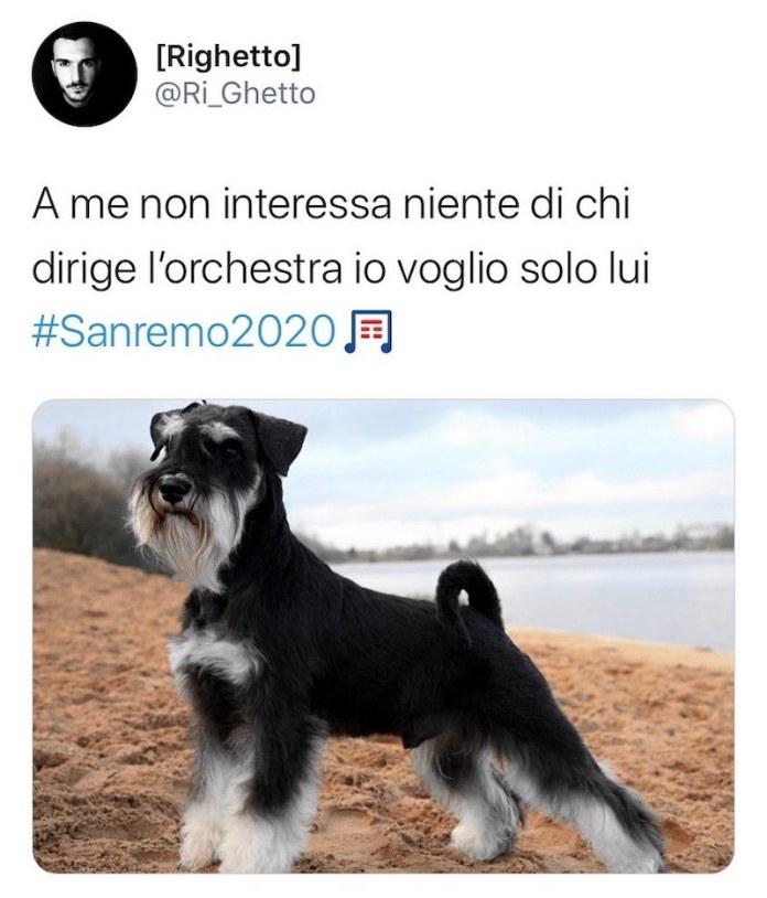 cliomakeup-sanremo-2020-meme-divertenti-teamclio-4