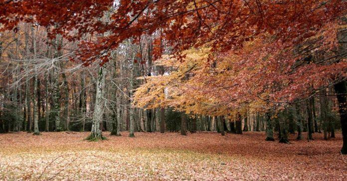 cliomakeup-viaggi-italia-autunno-14-gargano