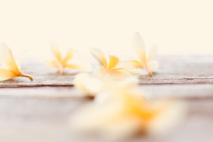 cliomakeup-olio-monoi-2-fiori