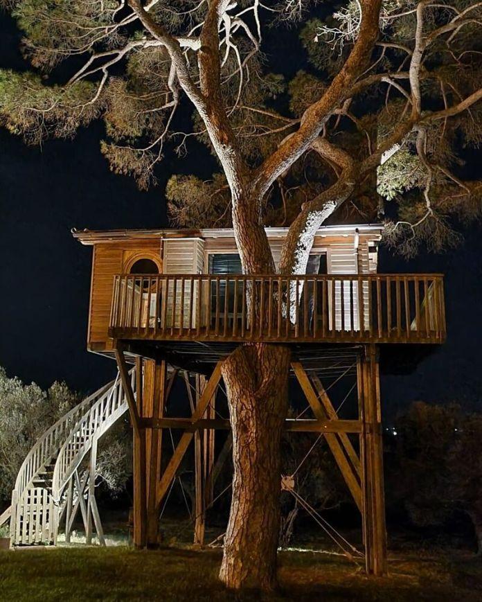 cliomakeup-case-sull-albero-italia-lapiantata.arlenadicastro