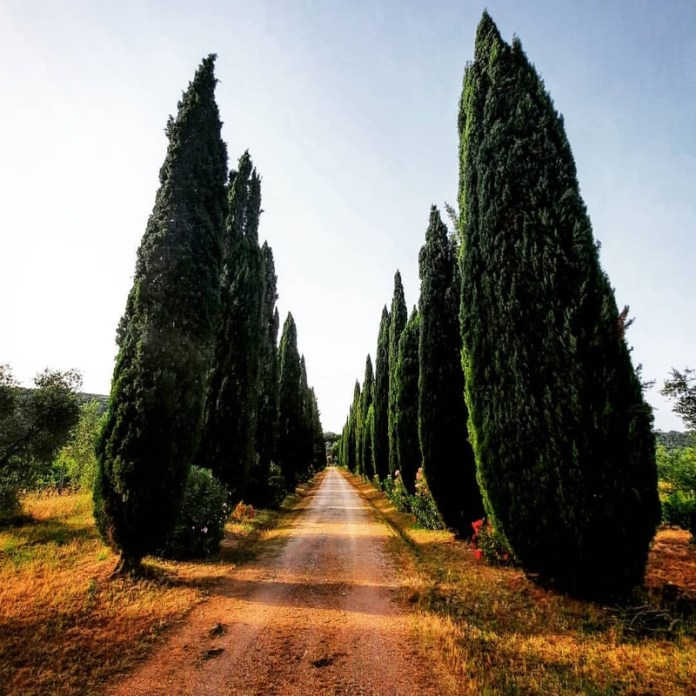 cliomakeup-viaggi-nozze-last-minute-2021-toscana-maremma