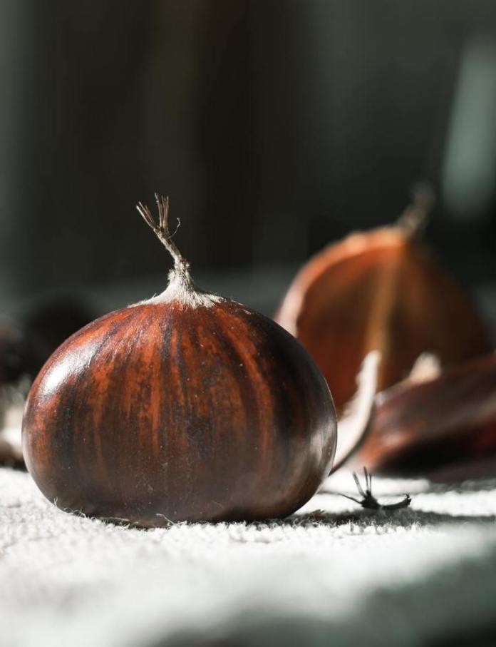 cliomakeup-passeggiate-castagne-bambini-frutto-autunno