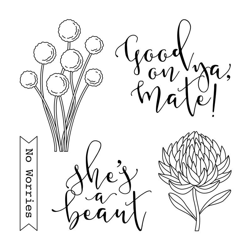 Australia Day Giveaway #ctmh #closetomyheart #australia #day #giveaway #aussie #greetings #expressions #goodonya #mate #good #beaut #stamp #set #myacrylix