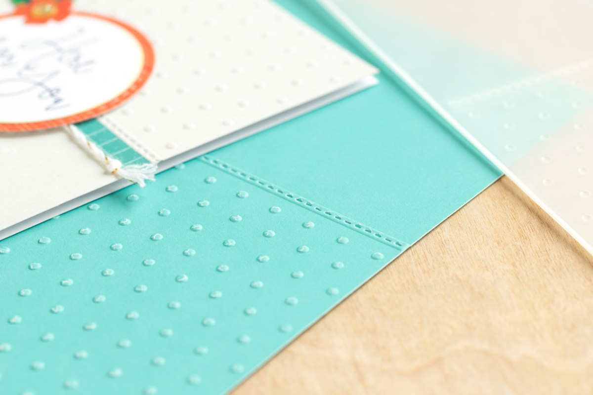 New and Exciting Products for the New Year #ctmh #closetomyheart #SE1 #seasonalexpressions #ideabook #papercrafting #cardmaking #scrapbooking #creating #diy #storytelling #memorykeeping #embossingfolder #cuttlebug