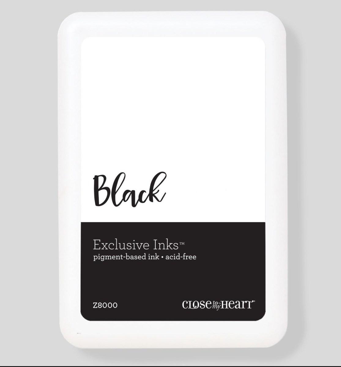 Black Ink Options #closetomyheart #ctmh #blackinks #inkpads #stamppads #pigmentinks #pigmentpads #exclusiveinks #archivalblack #intenseblack #blackpigment #stazon #scrapbooking #cardmaking #papercrafting #diy