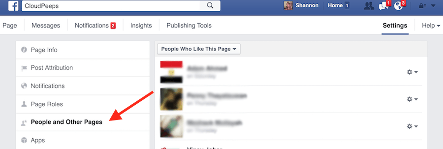 view-facebook-page-likes-2