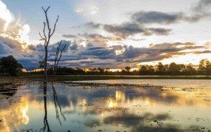 Corumbá e a beleza do Pantanal