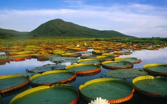 Melhores destinos do ecoturismo no Brasil