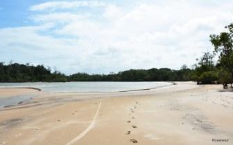 Lindos lugares para conhecer na Ilha de Marajó
