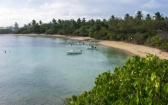 Depois da pandemia, planeje conhecer a Ilha de Santo Aleixo, em Pernambuco