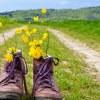 Passeio no campo: os benefícios do turismo rural