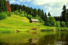 Tăul Brazi, Roşia Montană