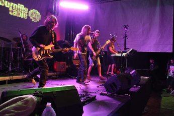 Concert la FânFest 2013